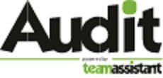 SW pro interní auditory, řízení práce interního auditu